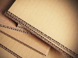 Endless Carton